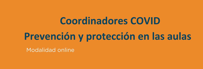 Curso De Coordinadores Covid Prevencion Y Proteccion En Las Aulas